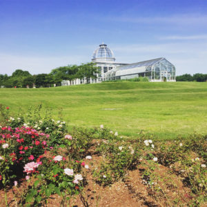 Lewis Ginter Butterfly Garden